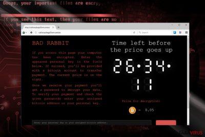 Captură de ecran a site-ului de plată al lui Bad Rabbit