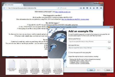 O imagine a virusului CryptoMix