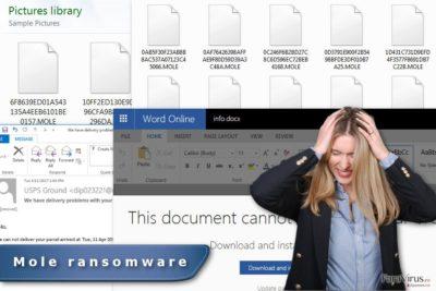 Imaginea virusului de tip ransomware Mole
