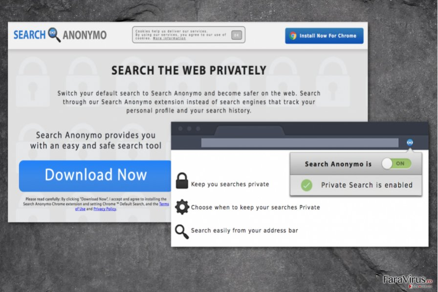 Search Anonymo virus
