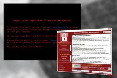 Virusul WanaCrypt0r
