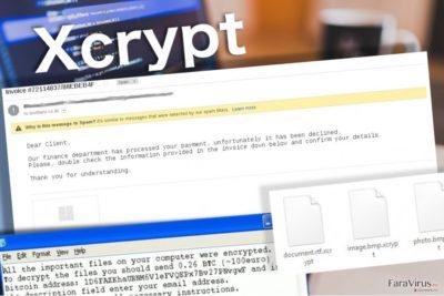 Virusul Xcrypt lasă nota de recompensă pentru victime